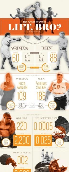 [演界信息图表]橙黑杂志风-兄弟,你能举多重
