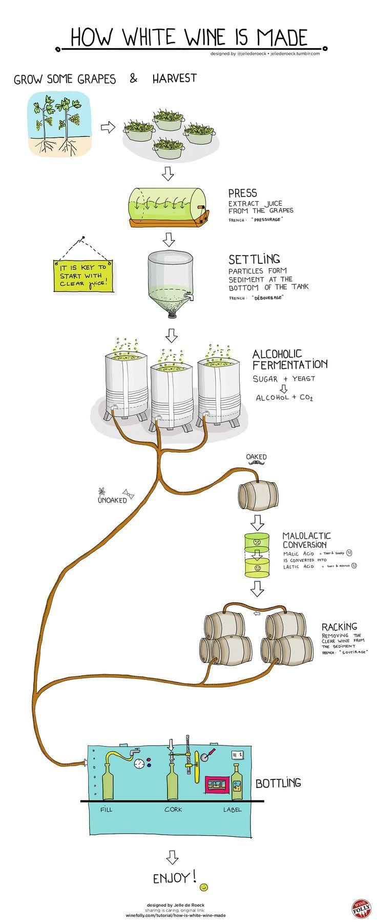 【演界网信息图表】手绘-白葡萄酒的酿制