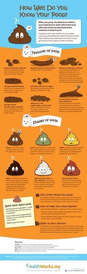【演界信息图表】卡通搞笑-你真的了解你的便便吗?