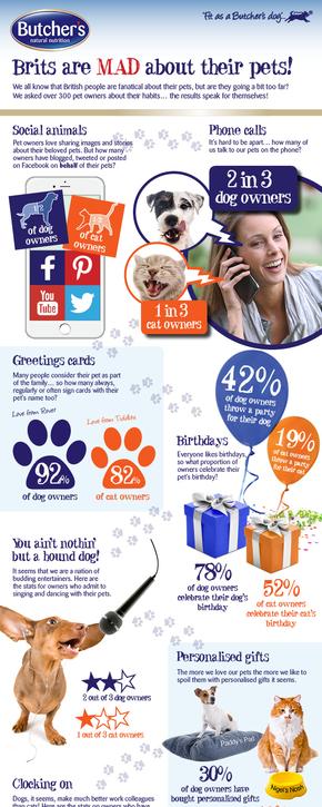 【演界信息图表】生动图片风-Brits对她的宠物很着迷
