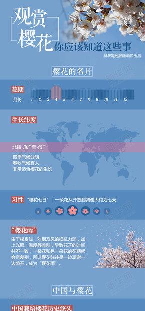 【演界信息图表】关于赏樱的小知识