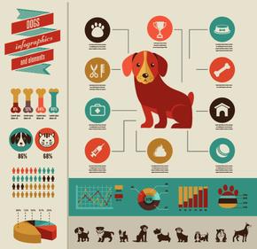 【演界信息图表】扁平-狗狗的费用组成