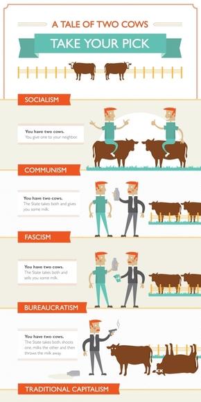 【演界信息图表】彩色卡通-两只牛的故事