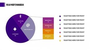 【免费】动态复合饼图精美图表(可编辑)
