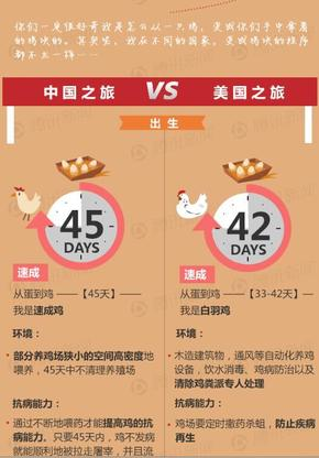 【演界信息图表】数据可视化-从鸡到鸡块的旅行