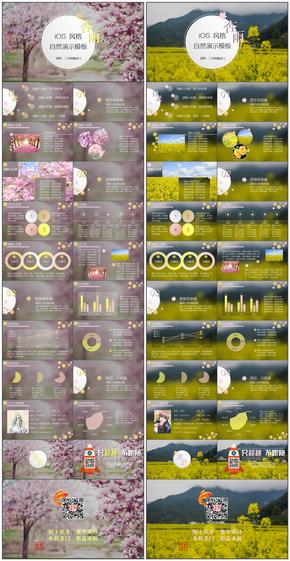 【三文鱼】【杏雨合集】动/静 黄/粉 四套 iOS风 自然 模板(赠送包装页)