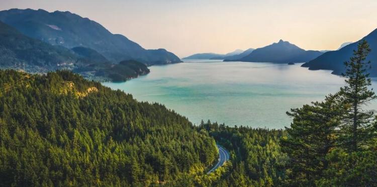 风景图片 大海 山 树木 作品标签: 风景图片大海山树木 发布时间