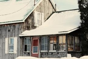 【图片分享计划】饿了的狮王_350 房屋 大雪