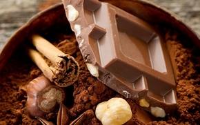 【图片分享计划】饿了的狮王_1288 食品 巧克力
