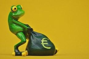 【图片分享计划】搞笑的青蛙第二弹 9P