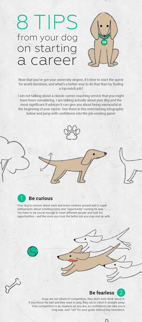 【演界信息图表】彩色手绘-训练狗狗的8个技巧