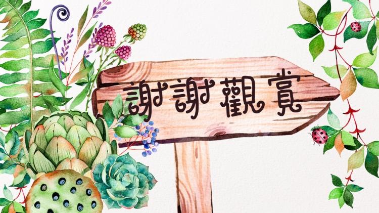 【秘密花园】创意唯美手绘植物总结汇报模板