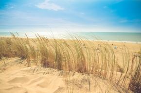 【桌面壁纸】海边 沙滩