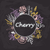 Cherry工作坊