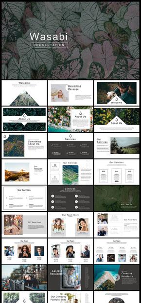 欧美风简约图片展示企业宣传企业介绍宣传画册个人写真产品发布品牌宣传等企业多用途PPT模板
