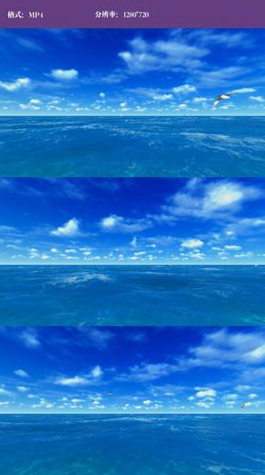海洋海鸥视频