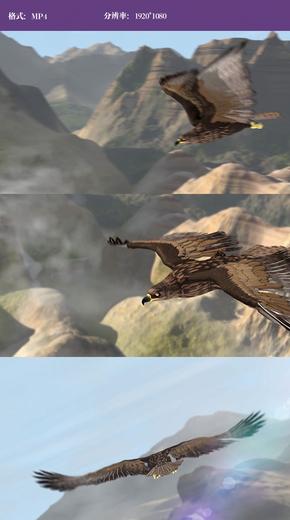 雄鹰飞翔特效视频