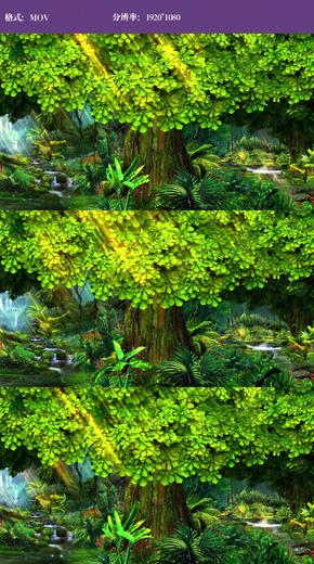 唯美仙境森林大树视频