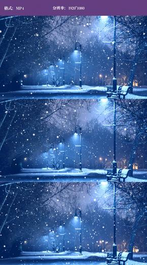 夜晚路灯雪景视频