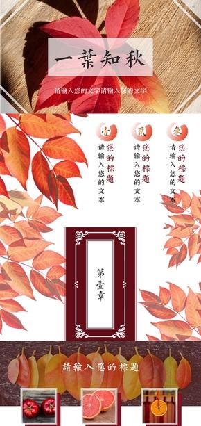 一叶知秋,中国风古典花纹工作汇报、个人总结、文科类课件PPT模板