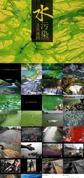 【选修:环境保护】《水污染》