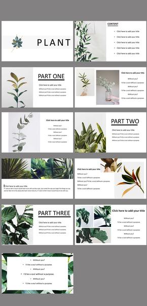 简约风  植物