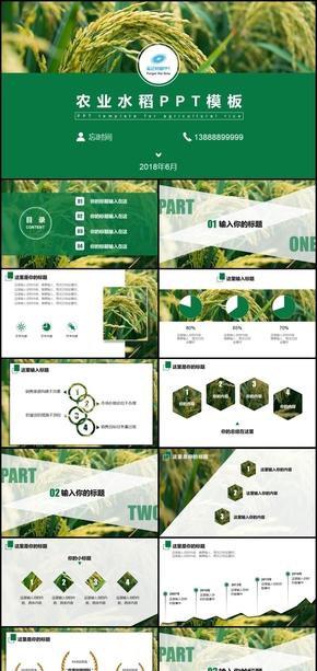 绿色农业生态水果农产品水稻谷大米玉米小麦农副产品介绍招商创业融资总结商务PPT模板