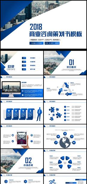 2018商业咨询策划书模板