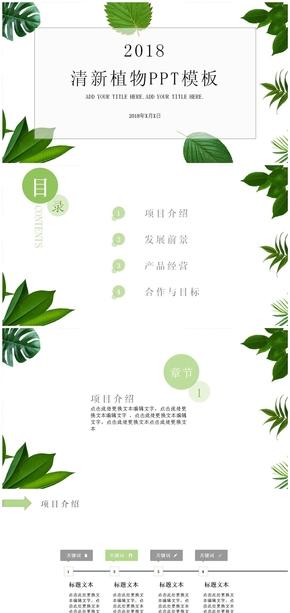 清新绿叶绿色植物PPT模板