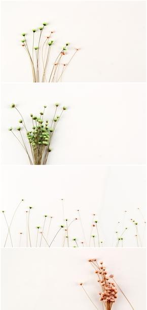 简约花束碎花PPT背景图片(共5张)