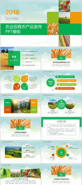 农业招商模板