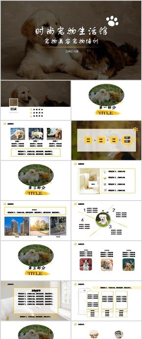 黄色时尚小清新可爱宠物店宠物美容狗狗猫咪展示模板