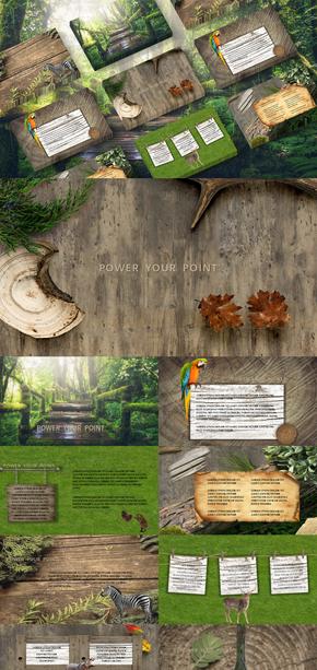 森林系|树木|植物|动物|PPT模板