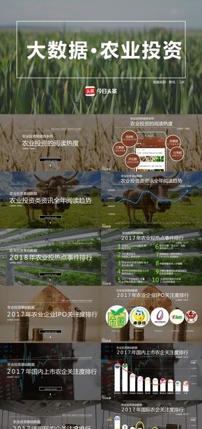 中国农业农民农村三农市场经济农业行业市场商业大数据解读农业投资商业环保大自然沉稳大气简约数据PPT