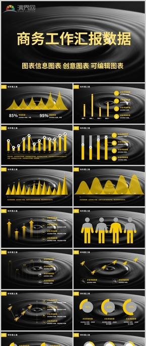 商务工作汇报数据图表信息图表 创意图表 可编辑图表