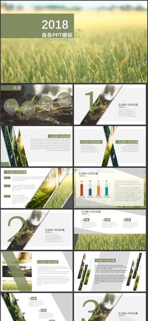 绿色主题 商务通用模板