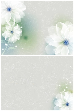 精选1套淡雅柔美花朵PPT背景图片