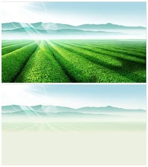 精选1套绿色庄园茶园PPT母版