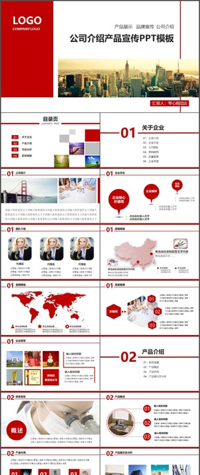 公司介绍产品宣传PPT模板6