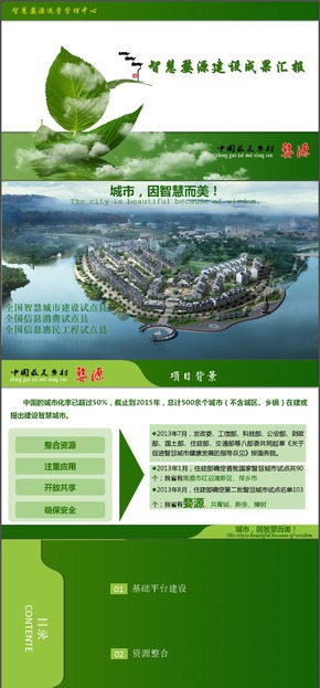 绿色智慧城市建设成果汇报