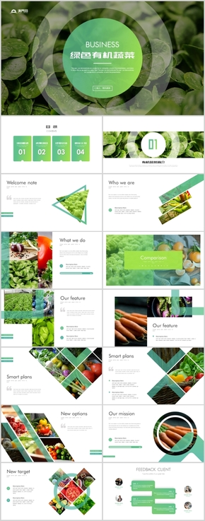 绿色农业蔬菜水果有机天然健康养生ppt模板