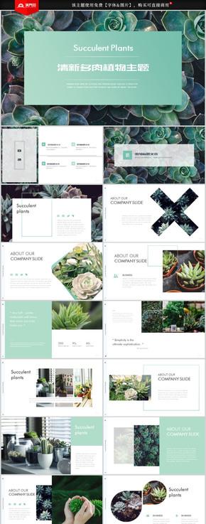 小清新多肉百科多肉植物画册绿色PPT模板
