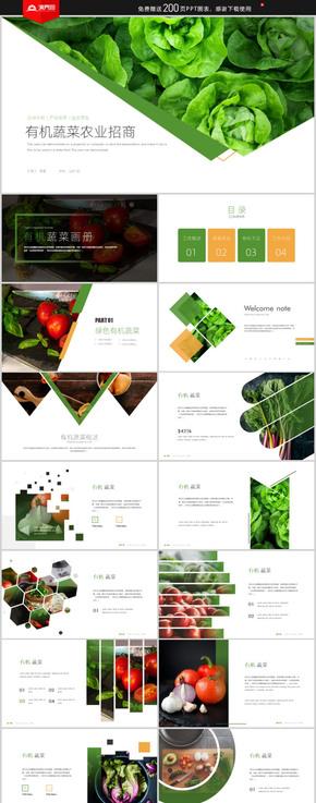 簡約創意綠色天然無公害農產品有機蔬菜畫冊PPT模板