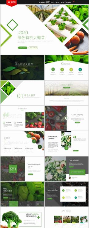綠色大棚蔬菜宣傳畫冊有機蔬菜種植技術培訓農業招商PPT模板