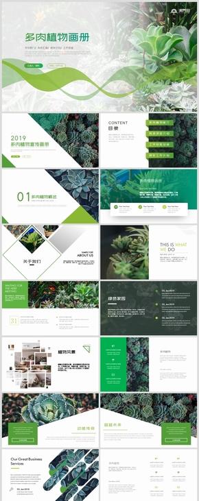 唯美绿色清新多肉植物生长敬畏生命成长课件PPT模板