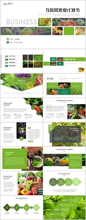 高端绿色互联网农副产品商业计划书融资策划PPT