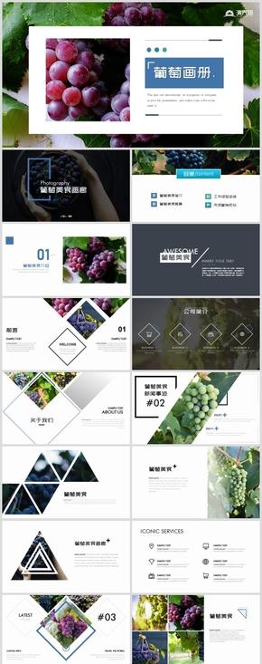 时尚葡萄水果宣传画册葡萄园种植产业PPT模板