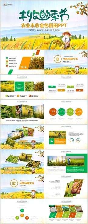 农业粮食农民丰收节小麦水稻玉米农村PPT