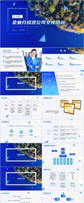 藍色(se)企業介(jie)紹(shao)及公司文化培訓