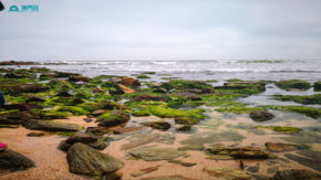 大海攝影圖